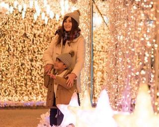 園内を300万球のLEDを装飾!静岡県浜松市・フルーツパークのイルミイベント