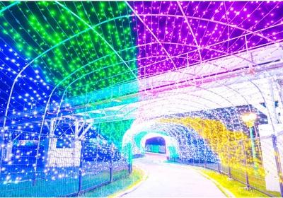 まばゆい回廊を歩ける光のトンネル