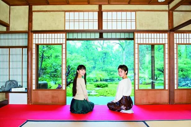 旧三井家下鴨別邸では、庭園を眺めながらお抹茶セット(600円)などでひと休みを