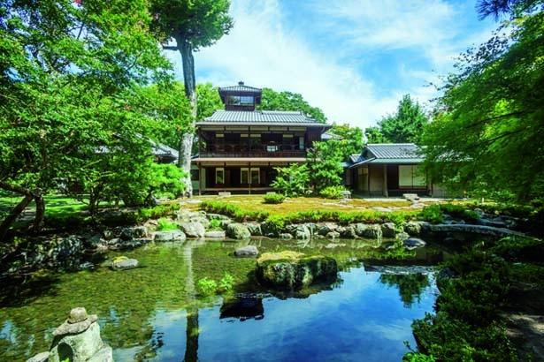 滝流れを持つ瓢箪形の池を中心に広がる庭園。園路も整備され、散策もできる