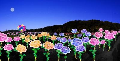 ランタンで作った高さ1.5mのバラ 300本