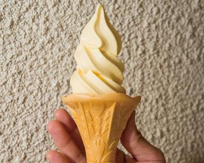 町田バーネット牧場 / カスタードソフトクリーム(360円)。地鶏の卵を使った人気メニュー