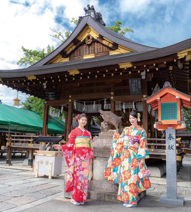 イノシシの神社で足腰の健康を祈願/護王神社