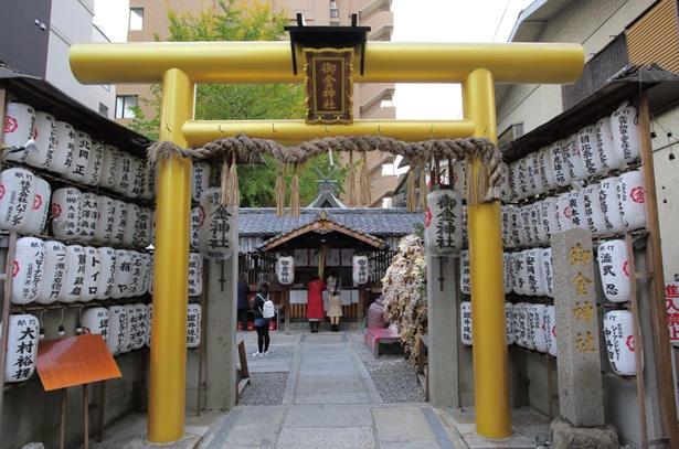 金色の鳥居に金運上昇の期待大/御金神社