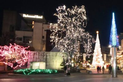 【写真を見る】色彩豊かなLEDで飾られた高知市中央公園