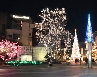 高さ17メートルの巨大なクリスマスツリー!高知県高知市「イルミネーションフェスタ2018」