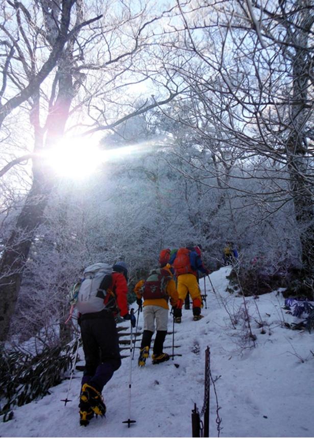 【写真を見る】スタッフや人気登山ガイドも同行するので初めてでも安心して参加できる
