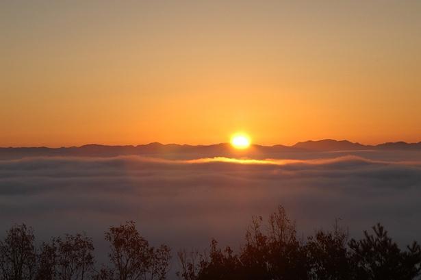 霧の海から太陽が顔を出す光景を目にできることも