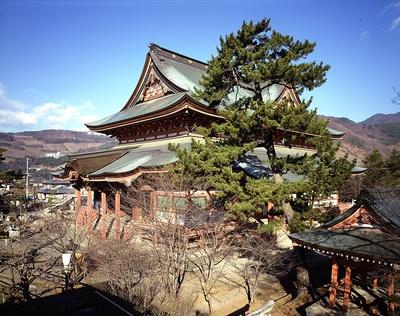 善光寺建築特有の撞木(しゅもく)造が採用された金堂