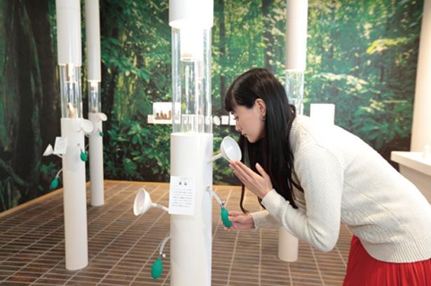 白いラッパがにょっきりと出た不思議な柱/松榮堂 薫習館