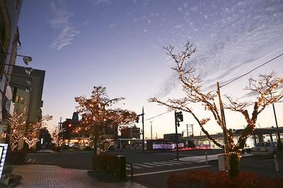 【写真を見る】薄暗くなった駅前を明るくしてくれるイルミネーション