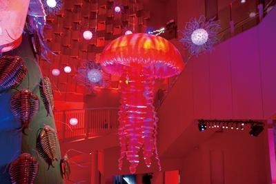 原生類時代に展示される赤色の巨大なクラゲ/太陽の塔