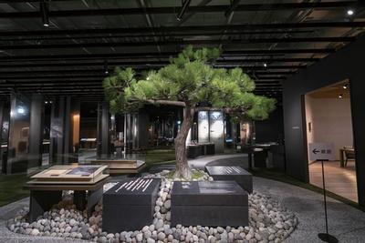 展示のスタートは松下幸之助の生家をイメージした立派なマツが迎える/パナソニックミュージアム