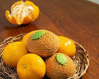 ハマのおやつ 神奈川県産のミカンを使った自慢のスイーツは今が食べごろ♪
