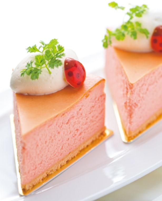 濃厚なチーズといちごの酸味が美味しい、ストロベリーベイクドチ―ズケーキ/ホテル日航大阪「ロビーラウンジ」