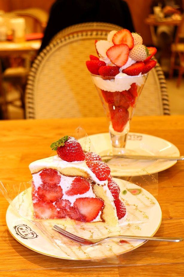さっぱりと食べられる!あまおう尽くしのケーキ「あまおうズコット」(1512円)。ズコットは果物とクリームの割合が8対2という黄金比で作られている