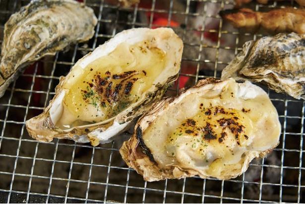 【写真を見る】カキ小屋inベイサイド / 人気の「牡蠣グラタン」(¥864)。アツアツをほお張ろう!