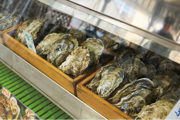 カキ小屋inベイサイド / ショーケースにはカキがずらり。「湾岸Bセット」(¥4104)は海鮮・焼鳥串・野菜入り