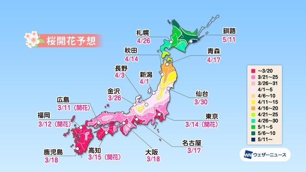 桜 見頃 2021 花見特集2021 桜の名所やイベント情報も