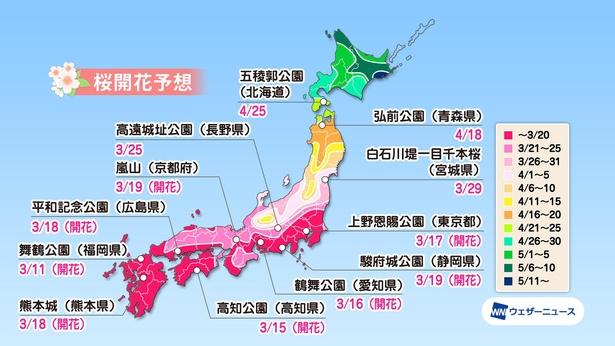 全国の桜名所の桜開花予想(情報は2021年3月24日発表  ウェザーニューズ)