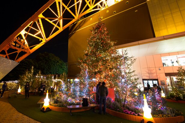 東京タワーの真下で、約7万3000個のLEDが温かみのある光を放つ/東京タワー