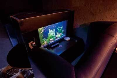 ARPEGGIO:熱帯魚が泳ぐ水槽付きのカップルシートは密着度高め