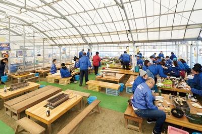 かきのますだ / 福吉漁港自慢の「一粒かき」が味わえる