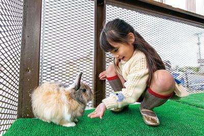 【写真を見る】アクトいちごファーム / ヤギ、ウサギ、アヒルを農園の受付で飼育