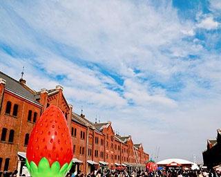魅惑のスイーツにイチゴの無料配布まで!2019年2月1日(金)~11日(祝)は横浜赤レンガ倉庫がイチゴに染まる!