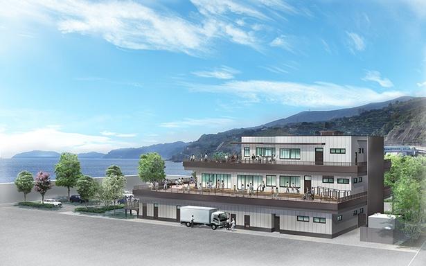 「漁港の駅 TOTOCO小田原」の完成イメージ