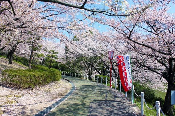 桜名所と遊びスポットを併せて紹介するので、まるっと1日楽しめる!