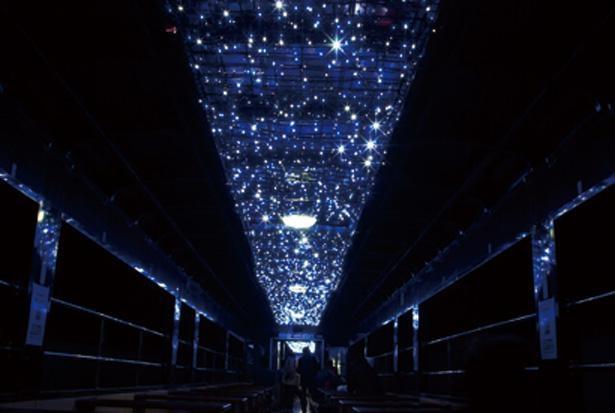 神戸─沢入間のトンネル内では車内でイルミネーションが点灯する