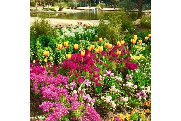 6つのガーデンを持つ「久屋大通庭園フラリエ」