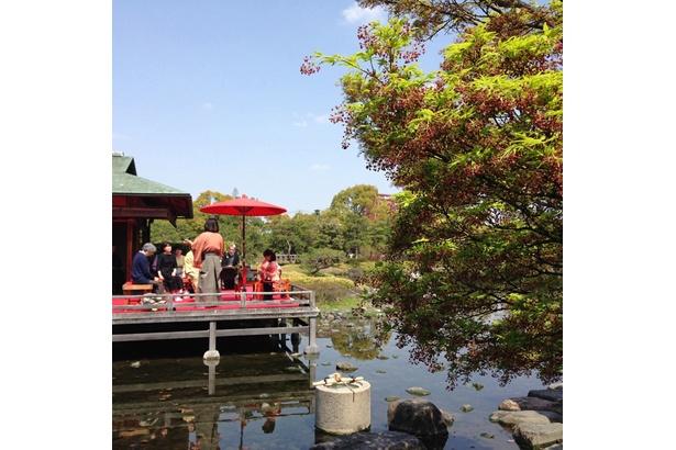 「白鳥庭園」(@tokugawaen_1103)なら、風流な茶会の光景が見られることも