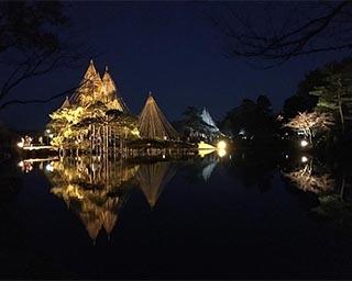 美しくライトアップされる会場。幻想的な雰囲気の中で冬の散歩を楽しんでみては?