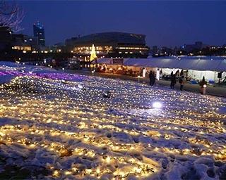光と音楽による冬の祭典!富山県富山市で「環水公園ウインターファンタジア」開催