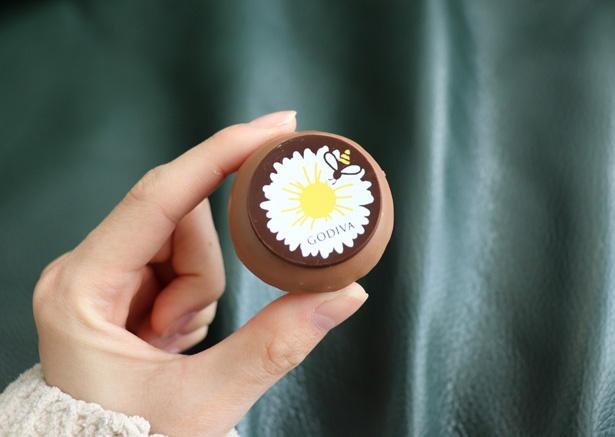 愛知県一宮市でしか販売されていない幻のハチミツ「福来密」を使用したフレーバー「フクラミツ&ミルクチョコレート」