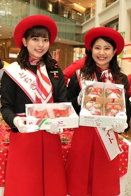 栃木県産農産物のイメージキャラクター「とちぎフレッシュメイト」が「とちおとめ」と「スカイベリー」を1粒ずつ配布!