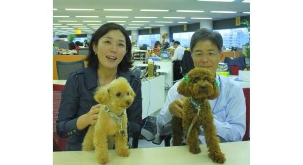 職場にペットが!? ペットを連れて出勤OKの「マース ・ジャパン リミテッド」の社内風景