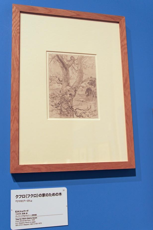 フクロ(オウル)の家のモデルとなった木のスケッチ