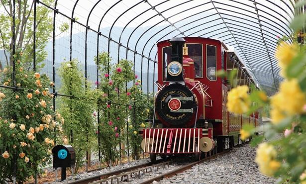 ノースエリアへは、ローザン鉄道ミルキーウェイ(片道500円)の利用が便利