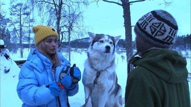 ローラ、極寒のフィンランドへ!
