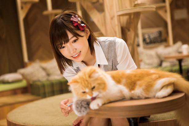 関西ウォーカーの人気連載「NMB48と猫カフェ」も全部見せ!