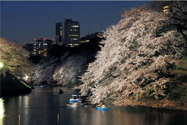 ボートから鑑賞する夜桜も趣たっぷり。ボートの営業時間は9:00~20:30、料金は30分あたり800円(共に観桜期)/千鳥ヶ淵