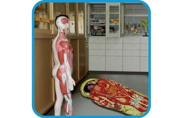 """""""人体模型""""同士のコラボレーションを楽しむもよし!"""