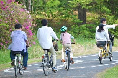 桜の鑑賞と合わせて、サイクリング(レンタサイクル大人520円/1日)を楽しむのもおすすめ!/国営昭和記念公園