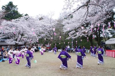 昨年の「滝山城跡桜まつり」では歌謡ショーや甘酒の振る舞いが行われた/滝山公園