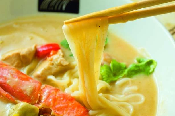 麺は手延べで作る富山県の氷見うどんを使用/UDON MAIN