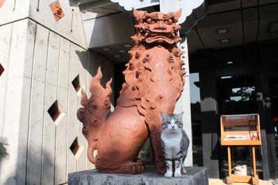 旅猫ニャン吉が行く!日本絶景旅@沖縄
