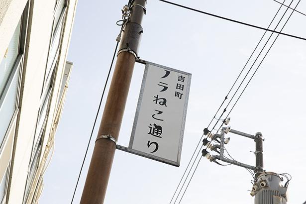 吉田町の裏通りにある「ノラねこ通り」。よく見ると看板にネコが!